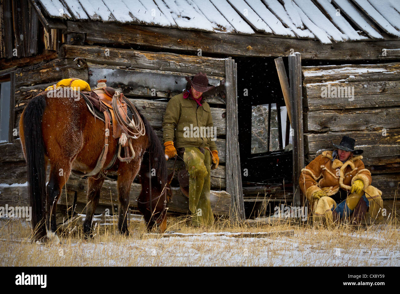 Cowboys on break with their horses on a ranch in northeastern Wyoming - Stock Image