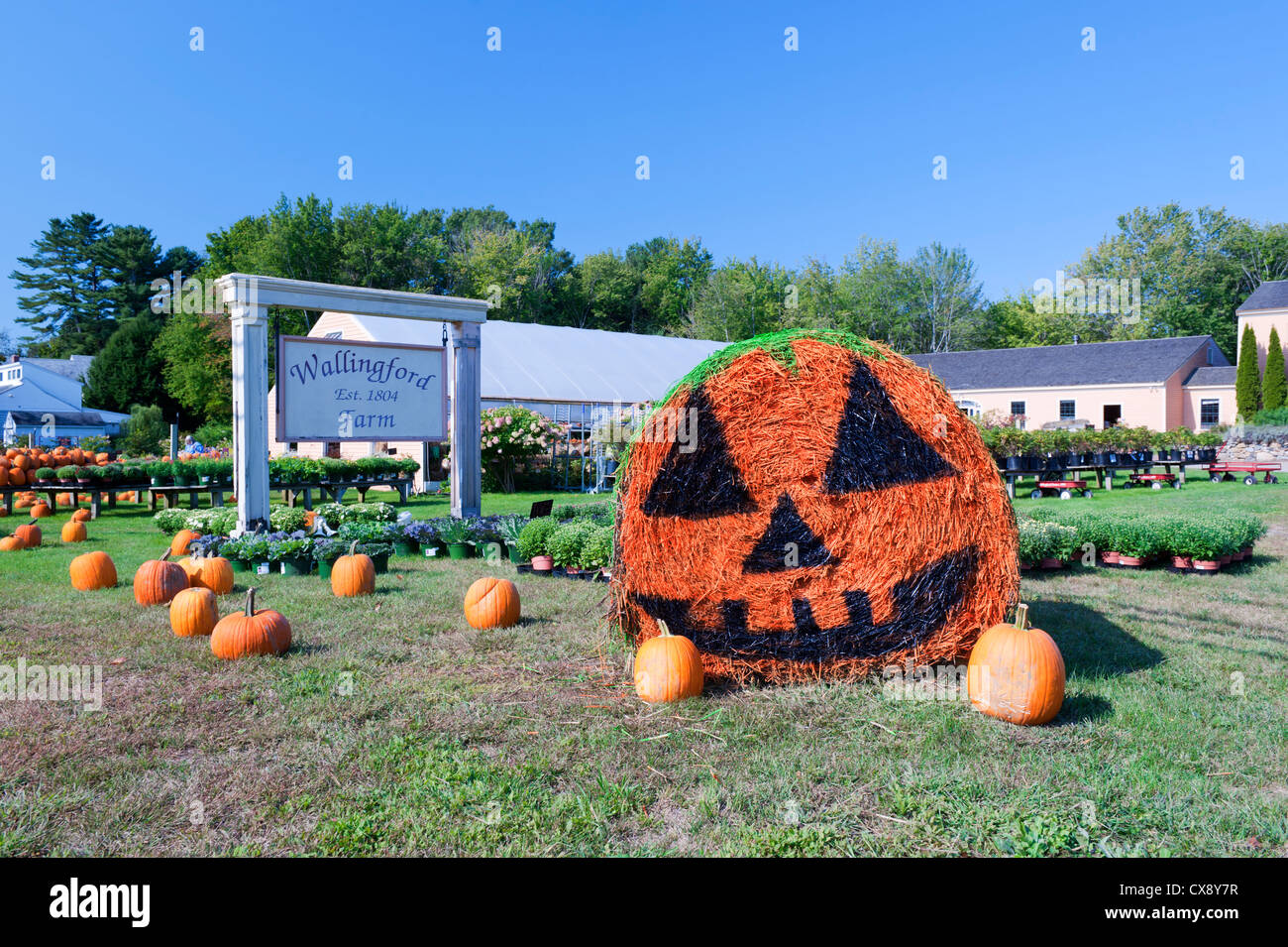 Hay bale decorated with the image of a Halloween pumpkin