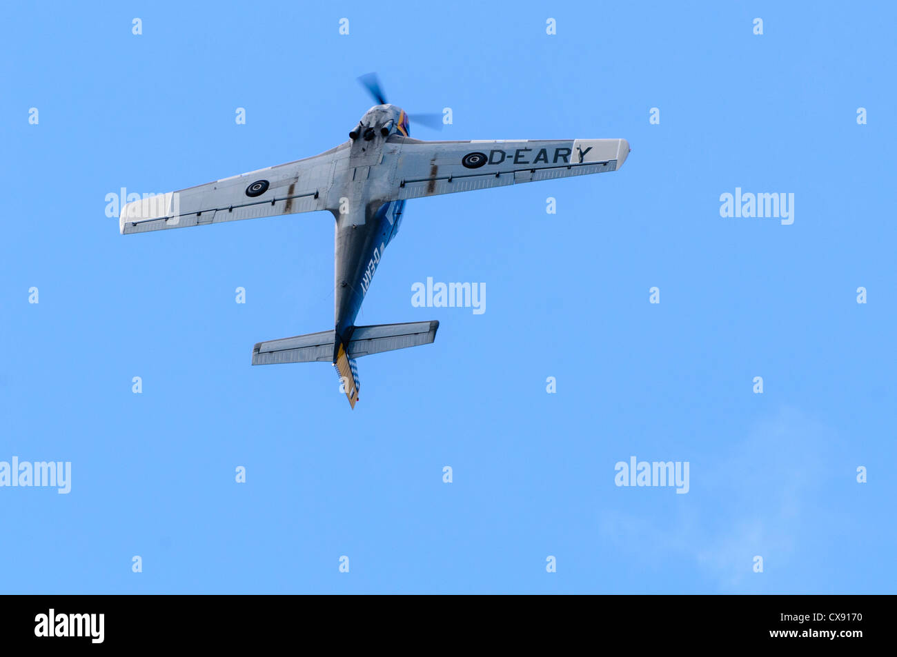 Italian Piaggio Aero P-149D airplane (D-EARY) pulling a loop-the-loop Stock Photo