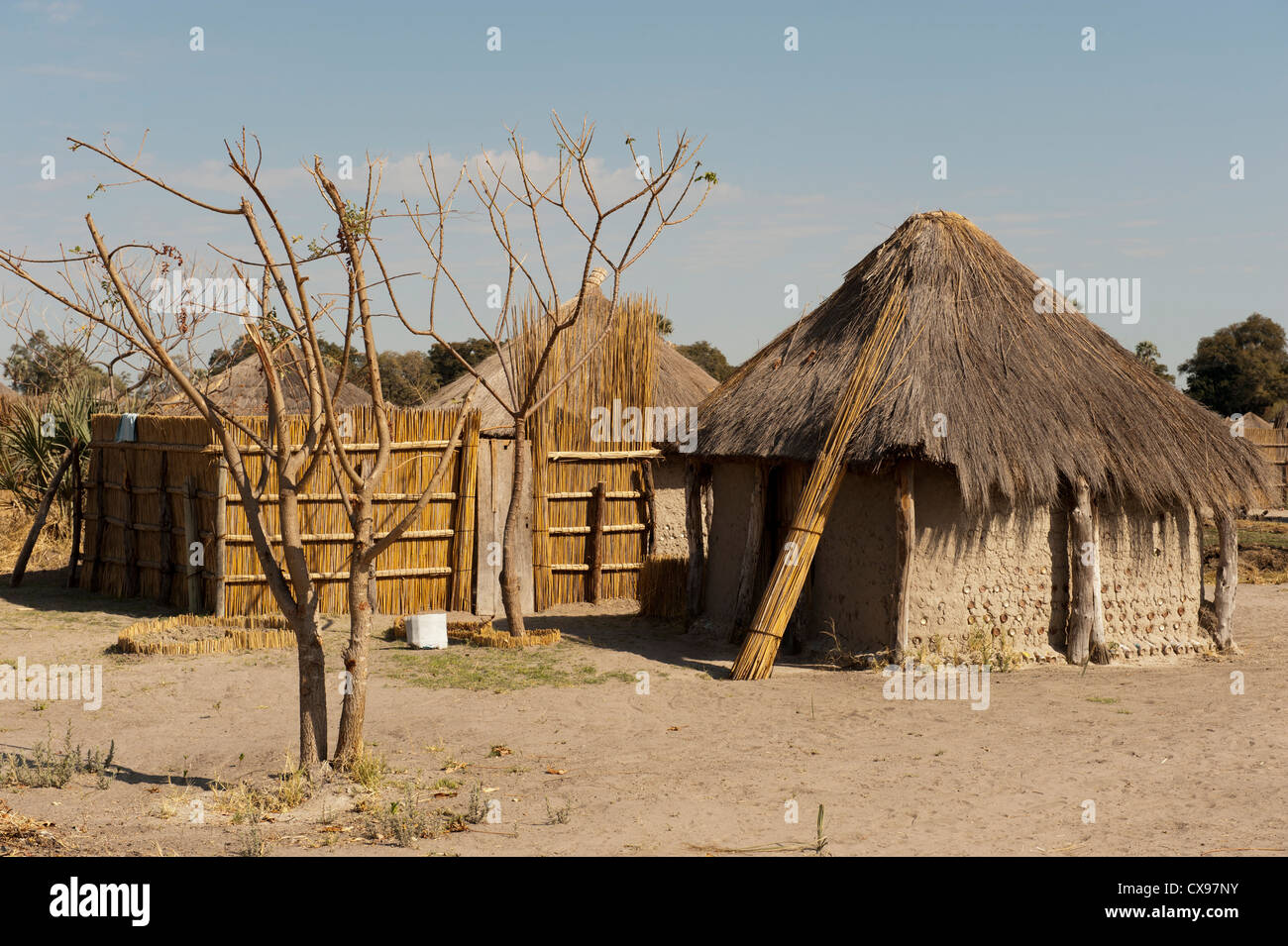 African village with t...