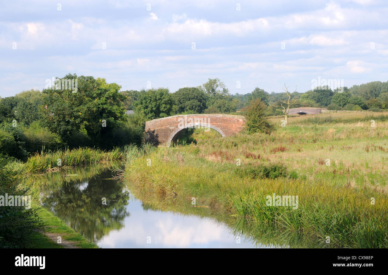 The Ashby-de-la-Zouch Canal near Congerstone, Leicestershire, England - Stock Image