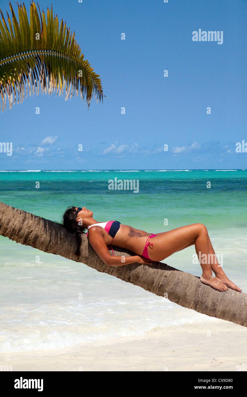 Coconut Tree Beach Resort Zanzibar