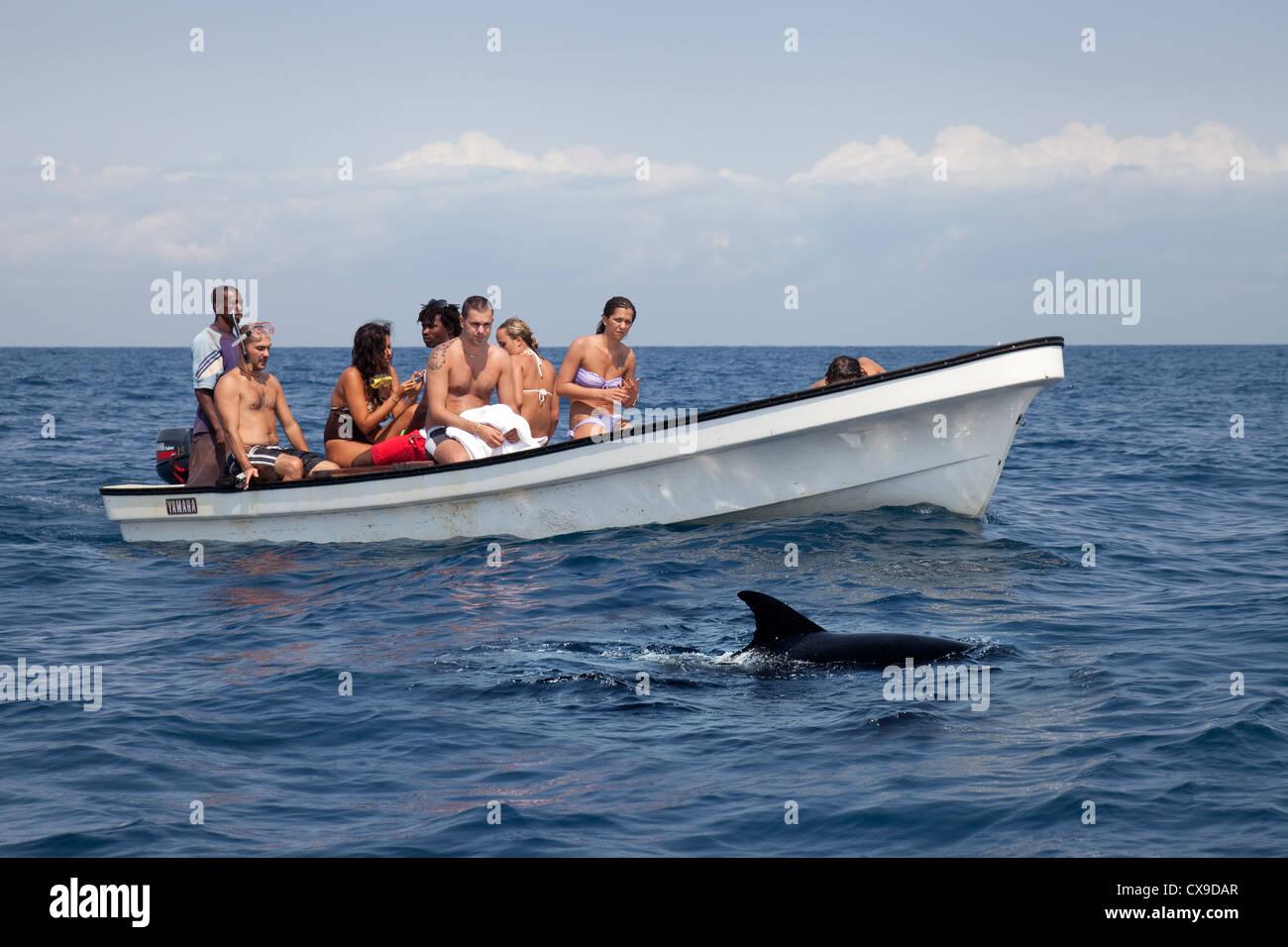 Tourists dolphin watching, Kizimkazi, Zanzibar, Tanzania  Africa - Stock Image