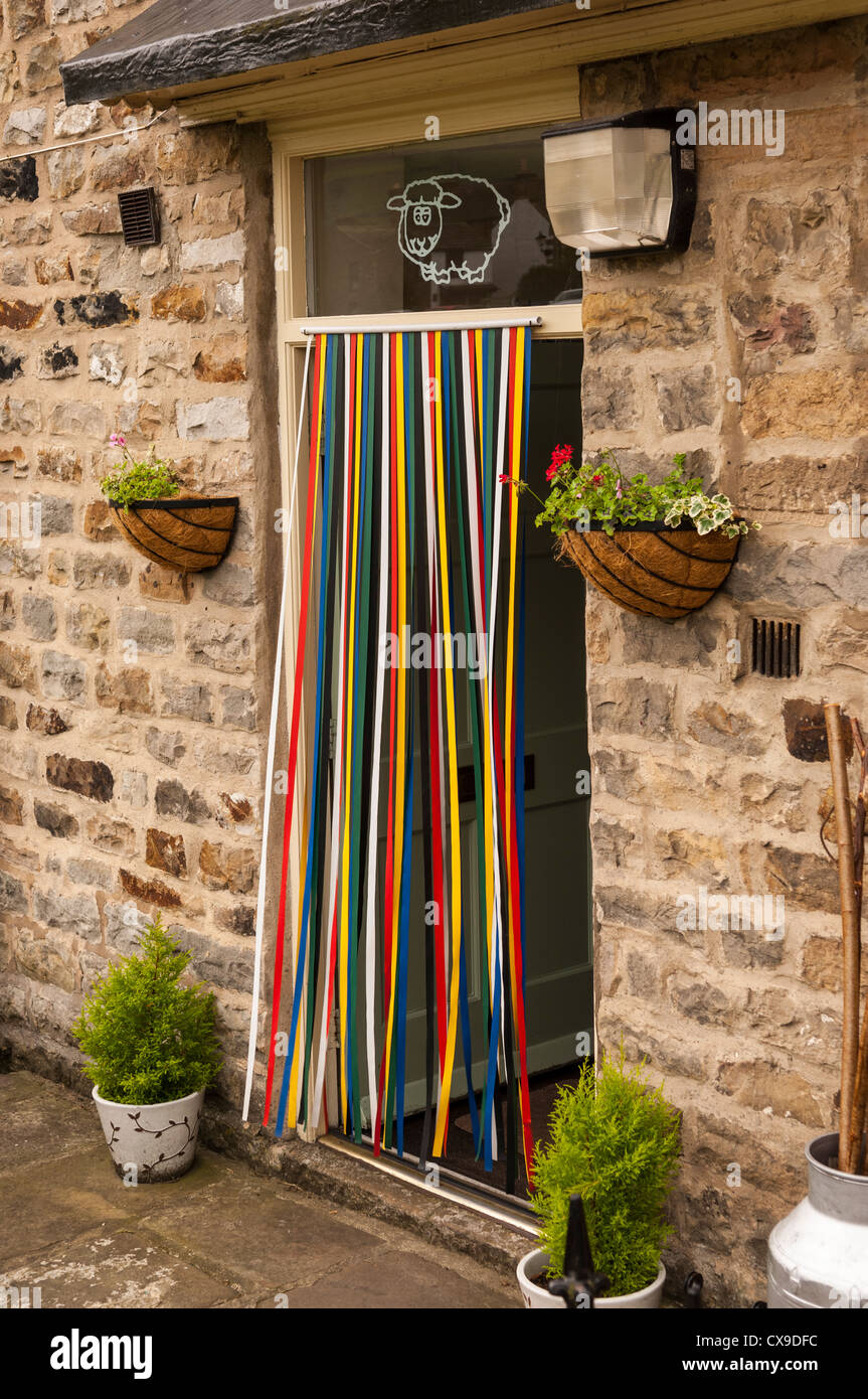 Coloured curtain strips hanging from a door to stop flies getting in - Stock Image