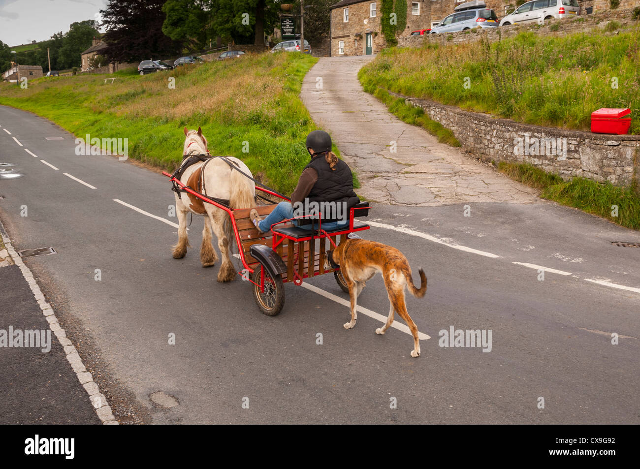 A pony and trap at Low Row in Swaledale , Yorkshire Dales , England , Britain , Uk - Stock Image