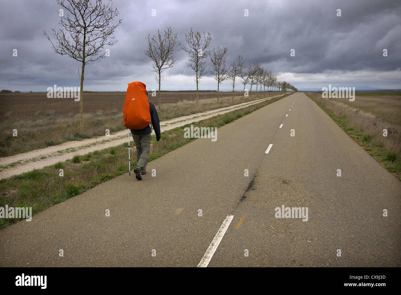 A pilgrim walking the camino to Santiago de Compostela, near Sahagun in Spain. - Stock Image