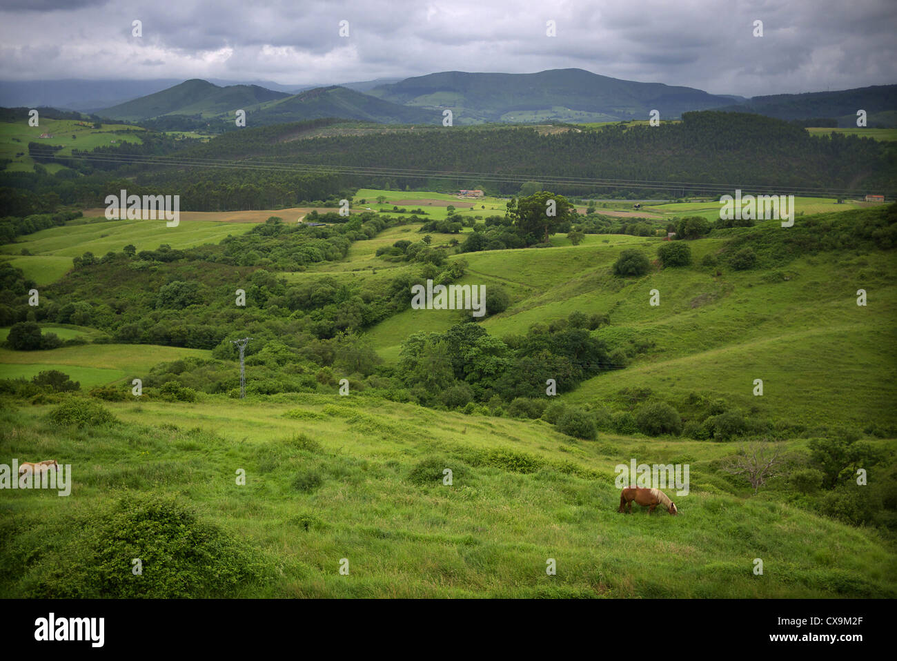 Countryside in the Cantabria region of Spain. - Stock Image