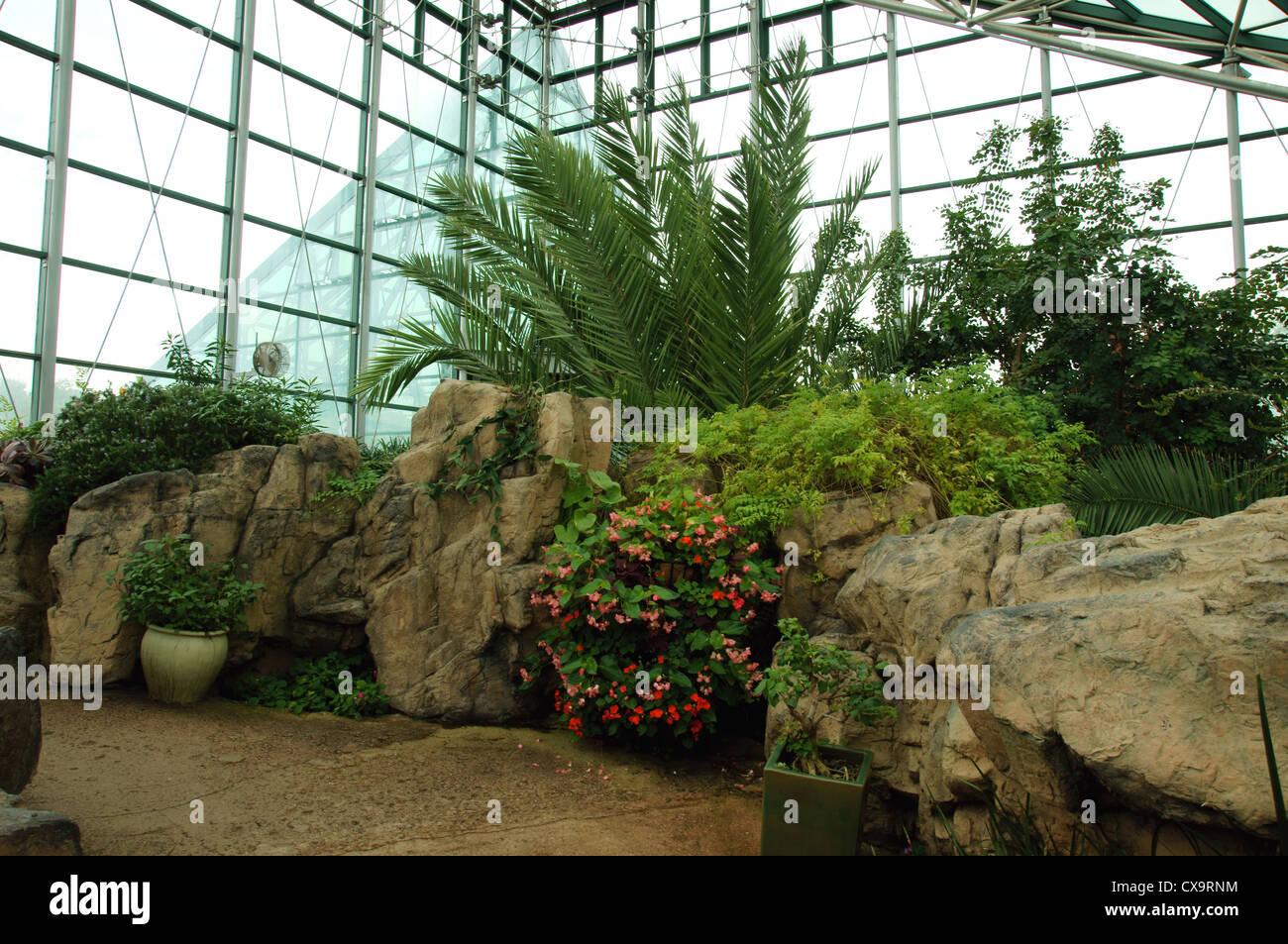 meditteranean dessert garden enclosure botanical gardens albuquerque alb alq new mexico nm close up plants - Stock Image