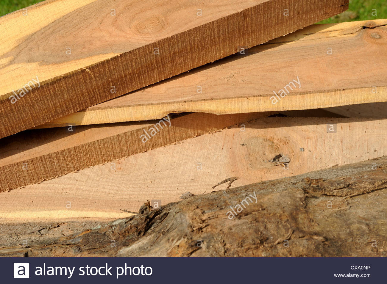 Recently sawn planks of wood. - Stock Image
