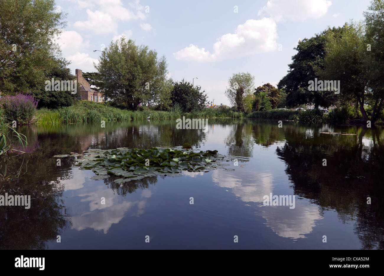 Wide-angle view of the Hare and Billet Pond, Blackheath, Lewisham. - Stock Image