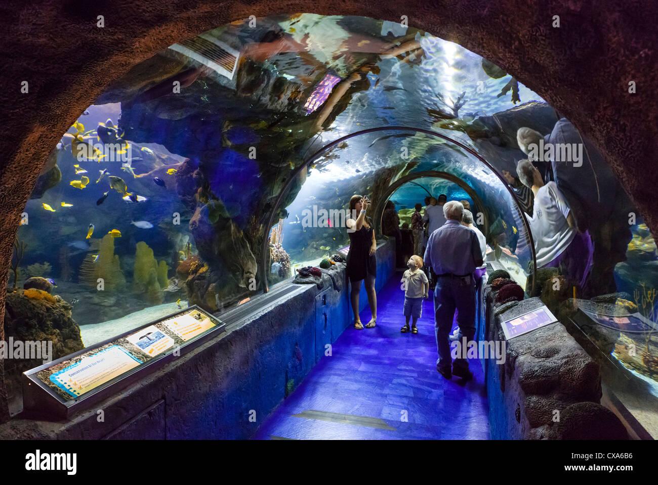 Sea Life Aquarium in the Mall of America, Bloomington, Minneapolis, Minnesota, USA - Stock Image