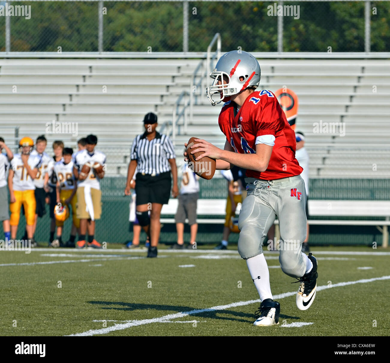 A quarterback looking for a receiver during a football game, a referee closely following the action. - Stock Image