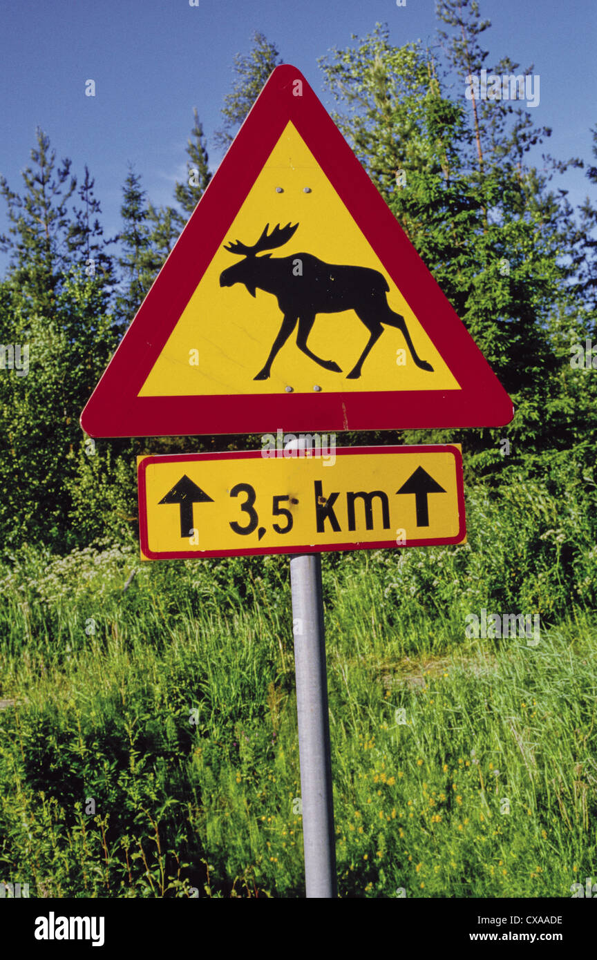 Moose crossing sign, Finland - Stock Image