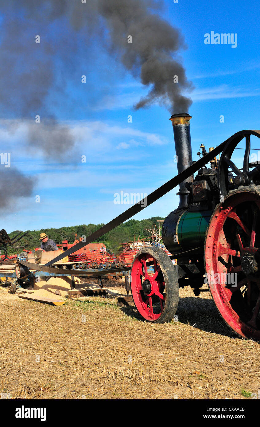 Marshall Traction Engine 'Firefly driving Davis Rack Saw Bench  and ripping logs at  ploughing and threshing - Stock Image