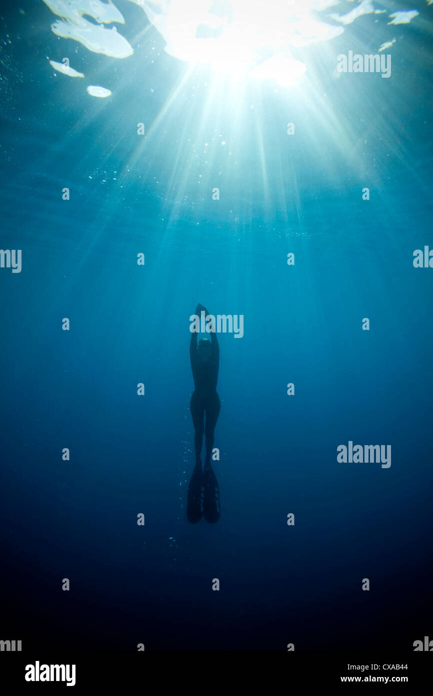 A skin diver ascends to the surface of the ocean. - Stock Image