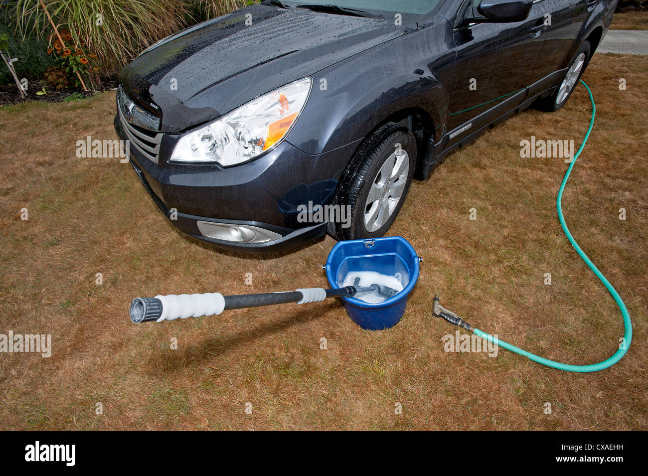 Car being washed on grass. - Stock Image