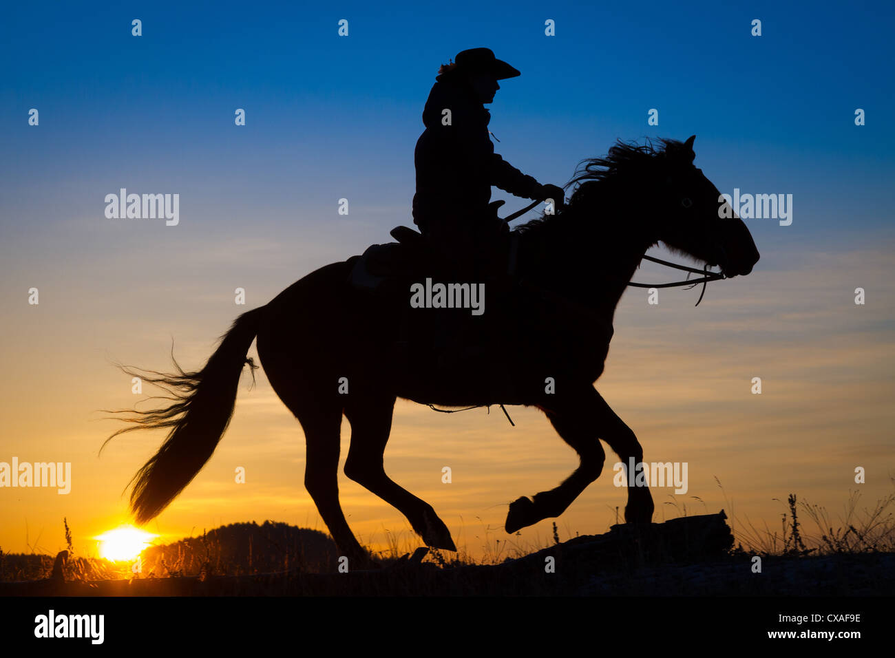 Cowgirl on riding across a ridge at sunrise on a ranch in northeastern Wyoming - Stock Image