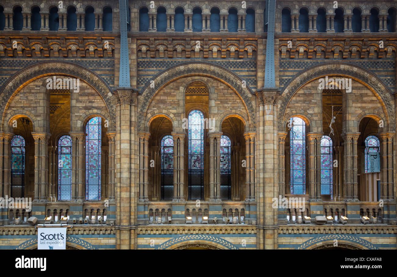 The Natural History Museum is on Exhibition Road, South Kensington, London, England Stock Photo