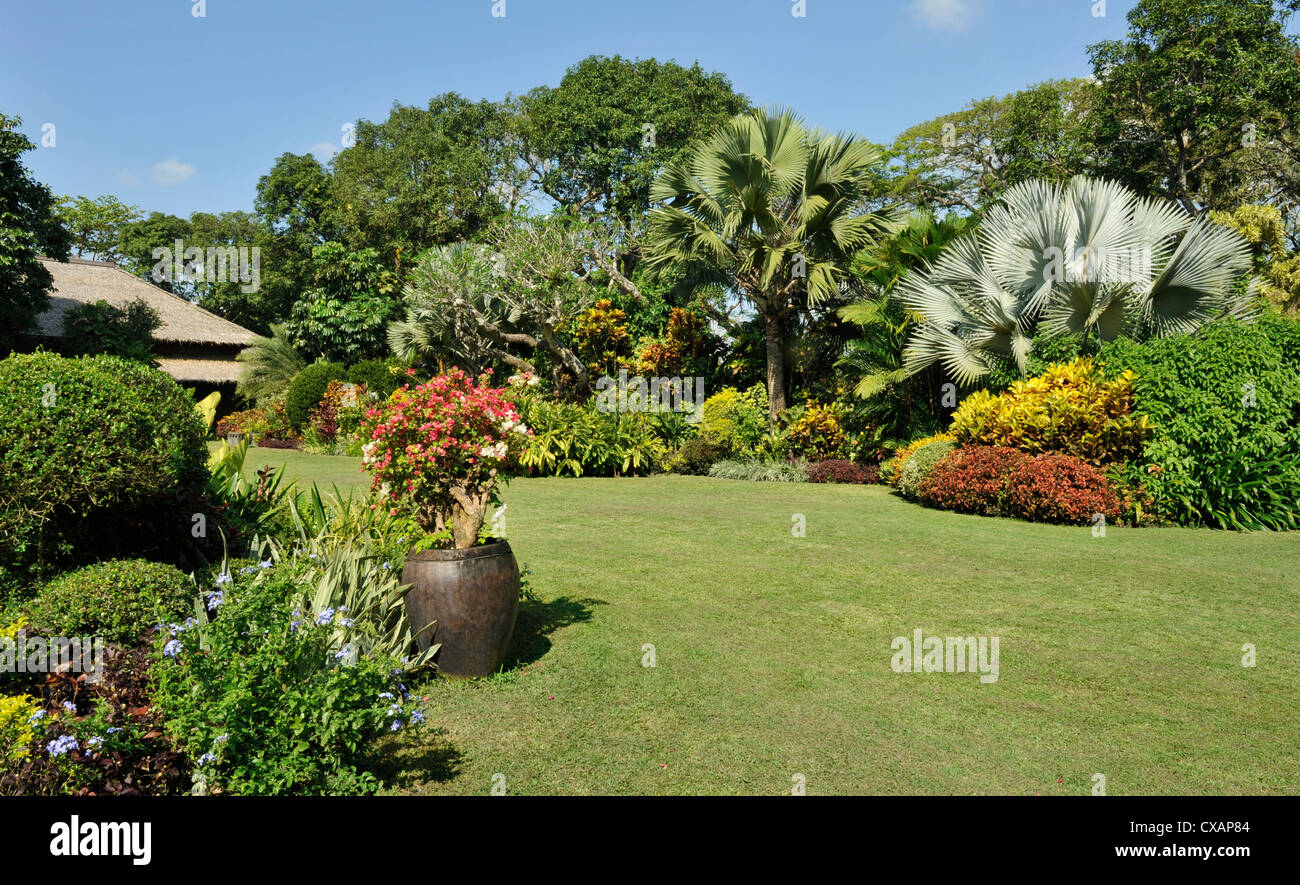 A tropical garden with colorful borders around a large lawn, Philippines, Southeast Asia, Asia - Stock Image