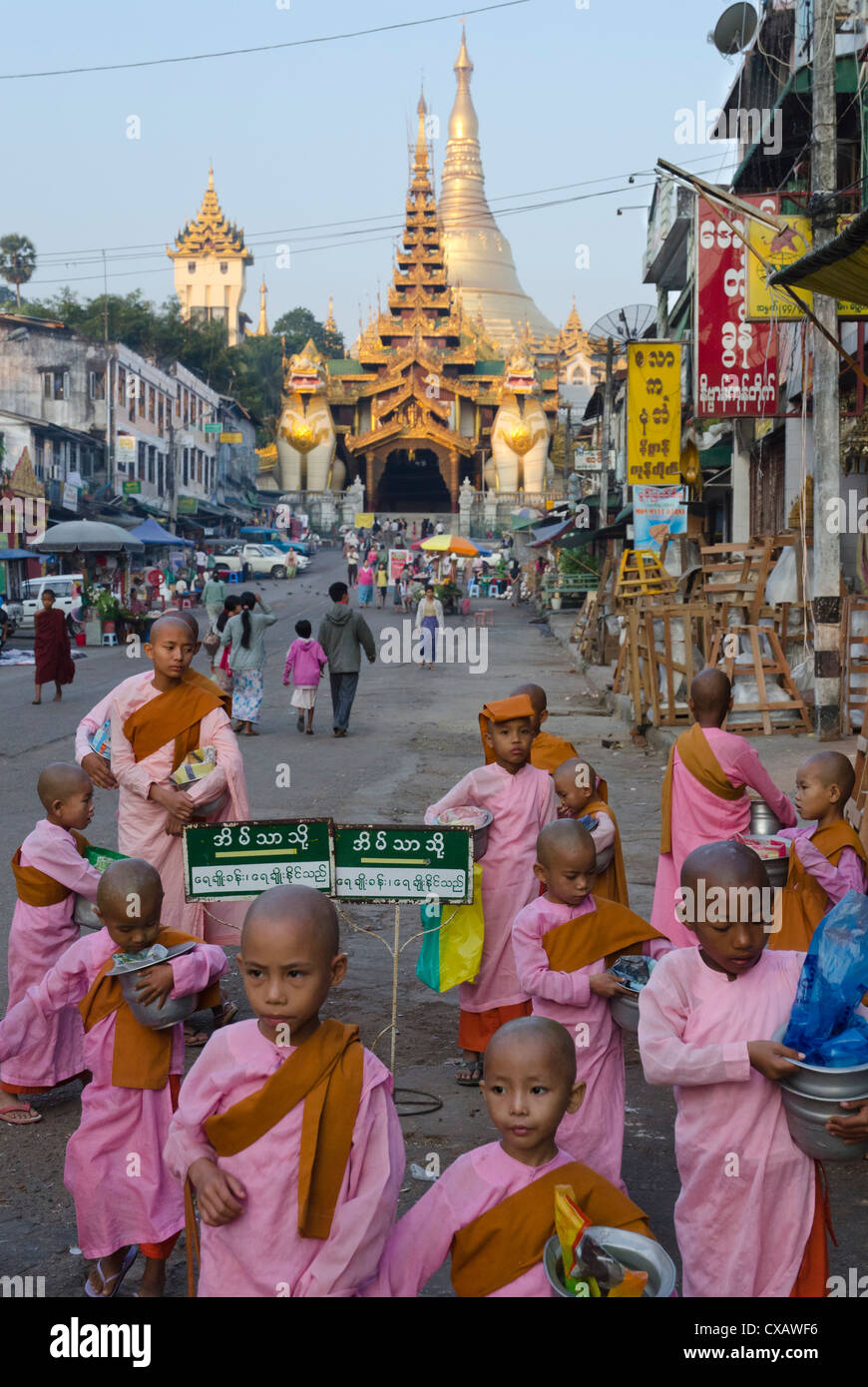 Young nun novices in front of the eastern entrance to Shwedagon, Yangon, Myanmar (Burma), Asia - Stock Image