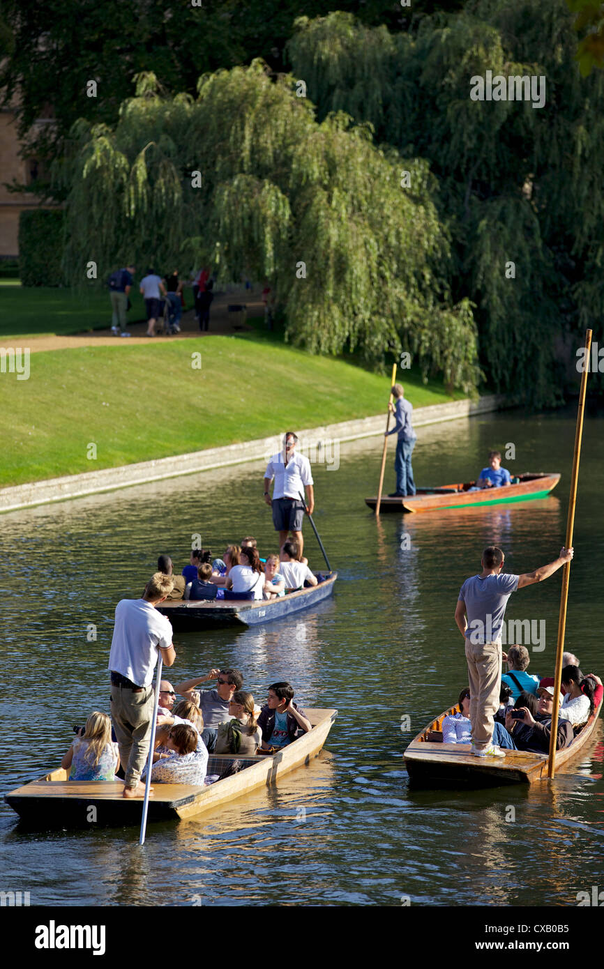 Punting on The Backs, River Cam, Clare College, Cambridge, Cambridgeshire, England, United Kingdom, Europe - Stock Image