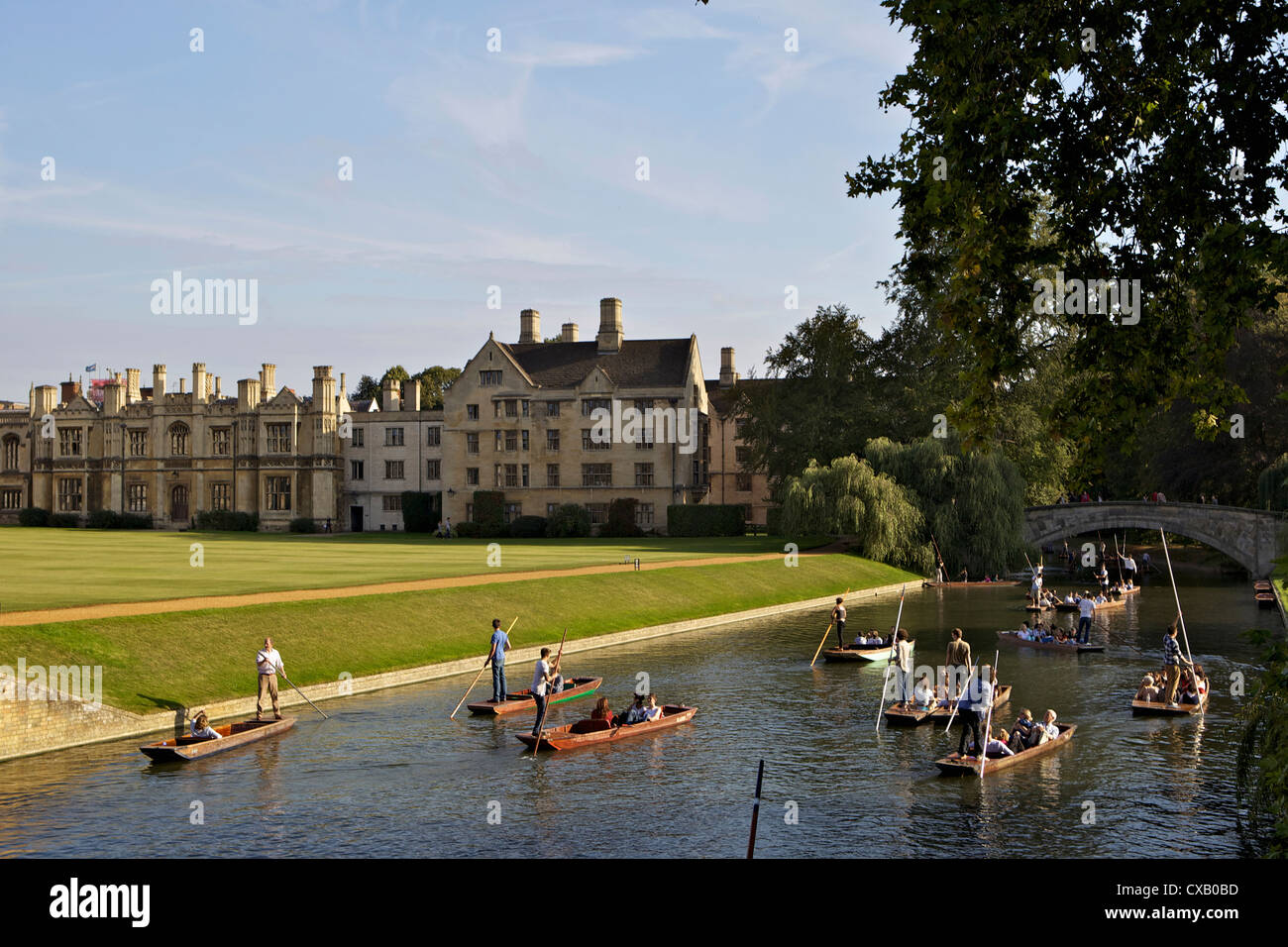 Punting on The Backs, River Cam, Clare College, Cambridge, Cambridgeshire, England, United Kingdom, Europe - Stock Image
