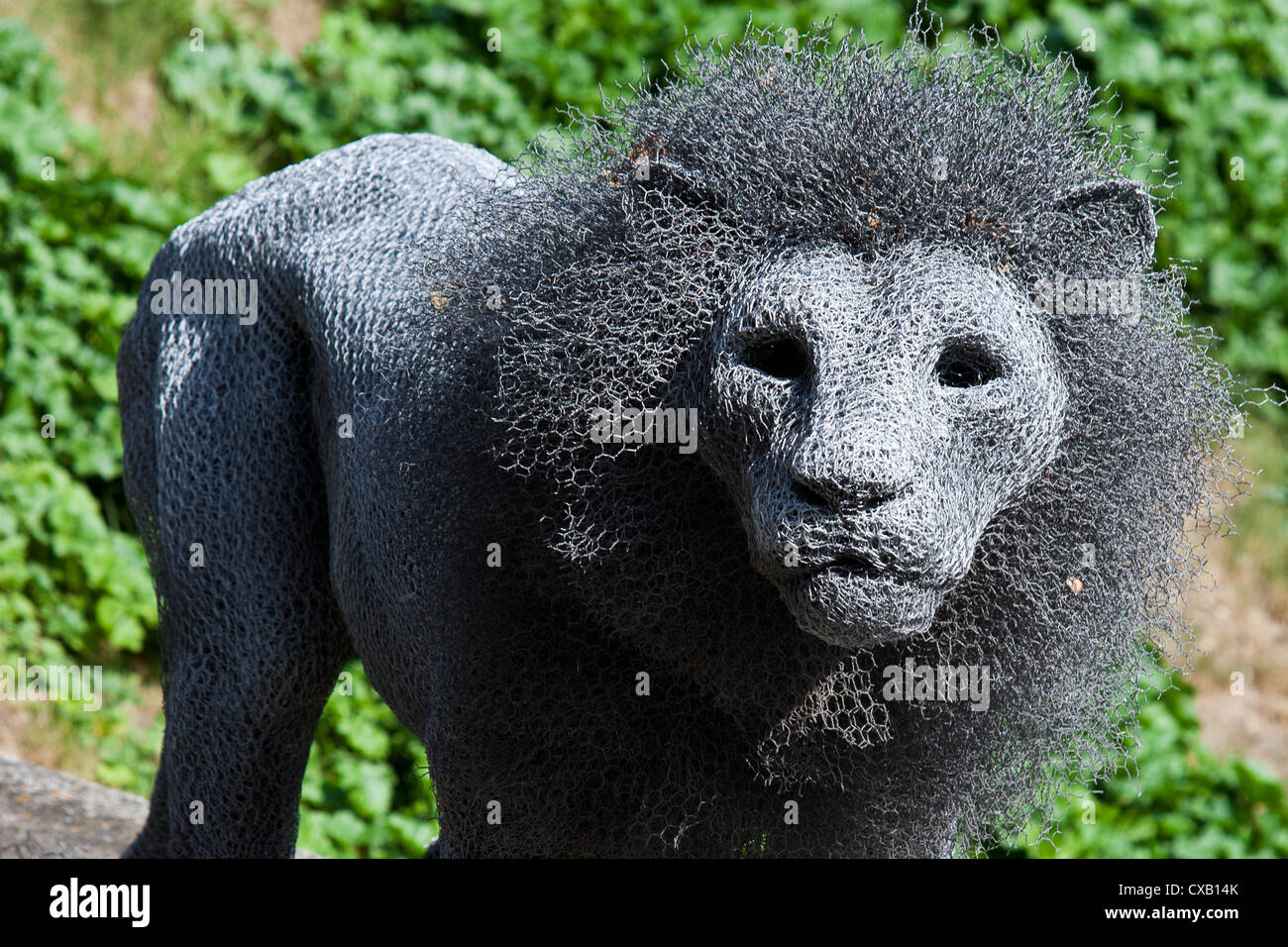 Kendra Haste sculpture of a lion part of the 'Royal Beasts' exhibition at the Tower of London, England, - Stock Image