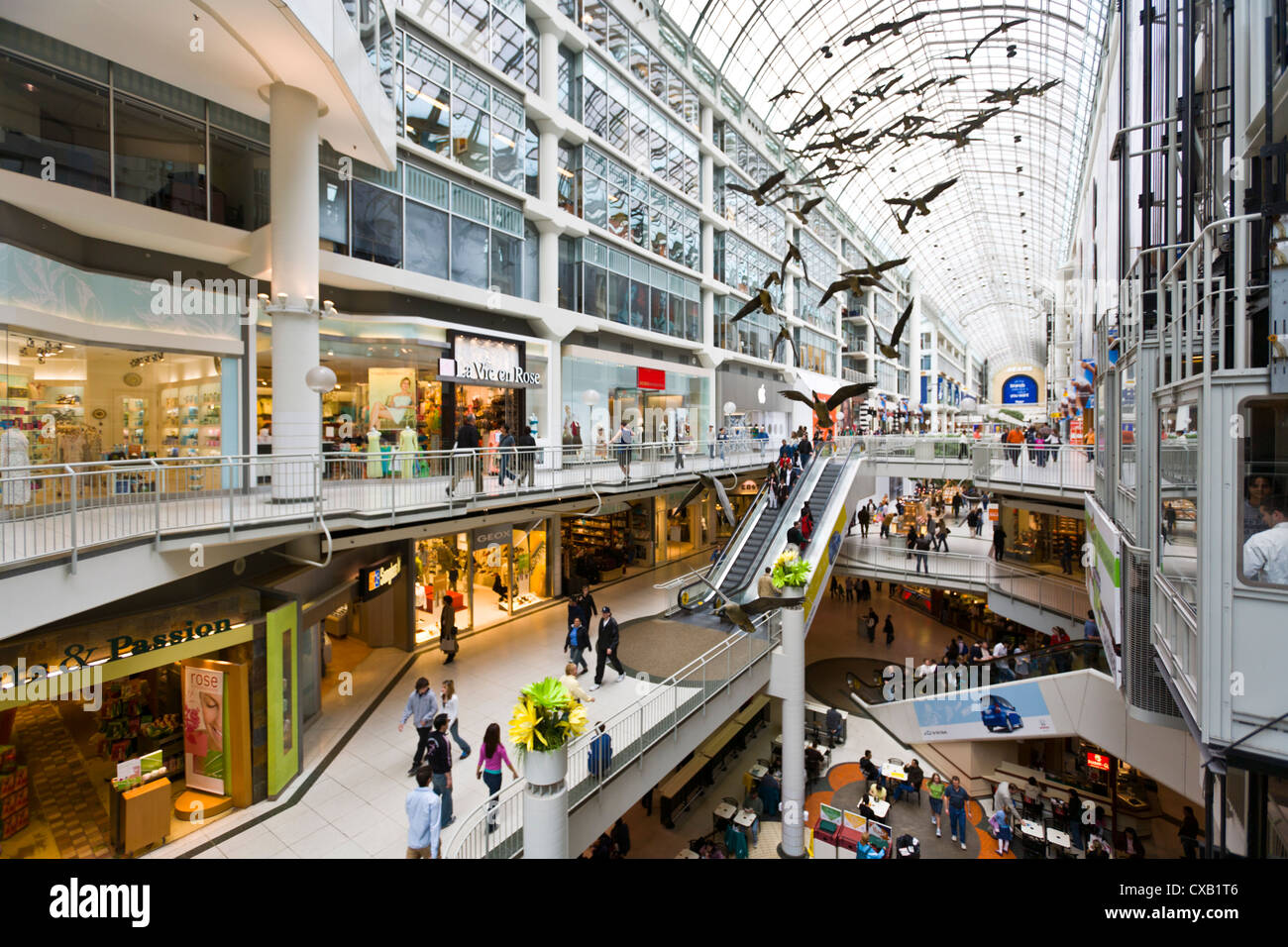 Image Result For Eaton Centre