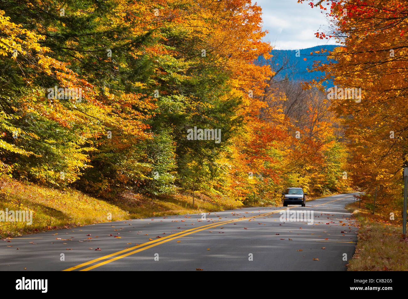 Bear Notch Road, White Mountains National Forest, New Hampshire, New England, United States of America, North America - Stock Image