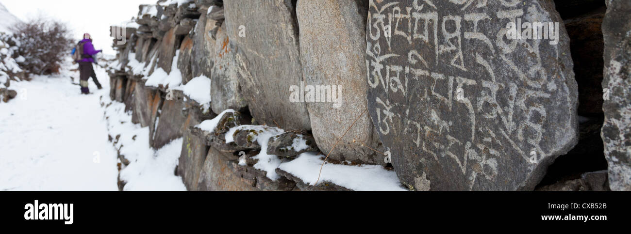 Old Mani Stones inscribed with a Buddhist mantra and covered with snow, Langtang Valley, Nepal - Stock Image