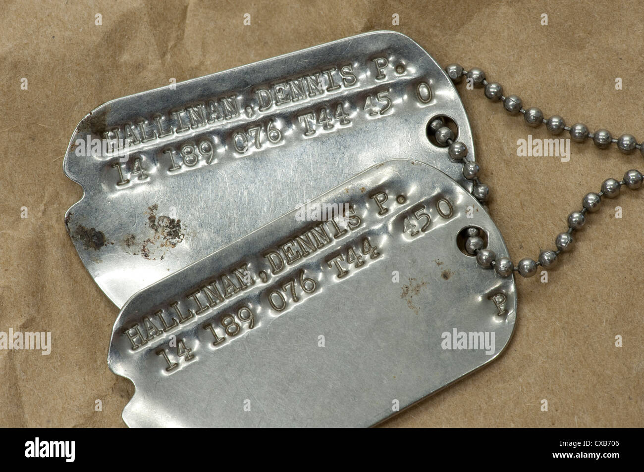 closeup conceptual view of American serviceman dog tags - Stock Image