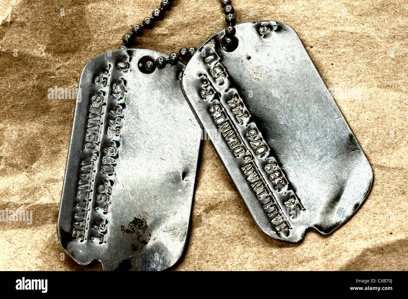 closeup conceptual view of American serviceman dog tags - Stock Image