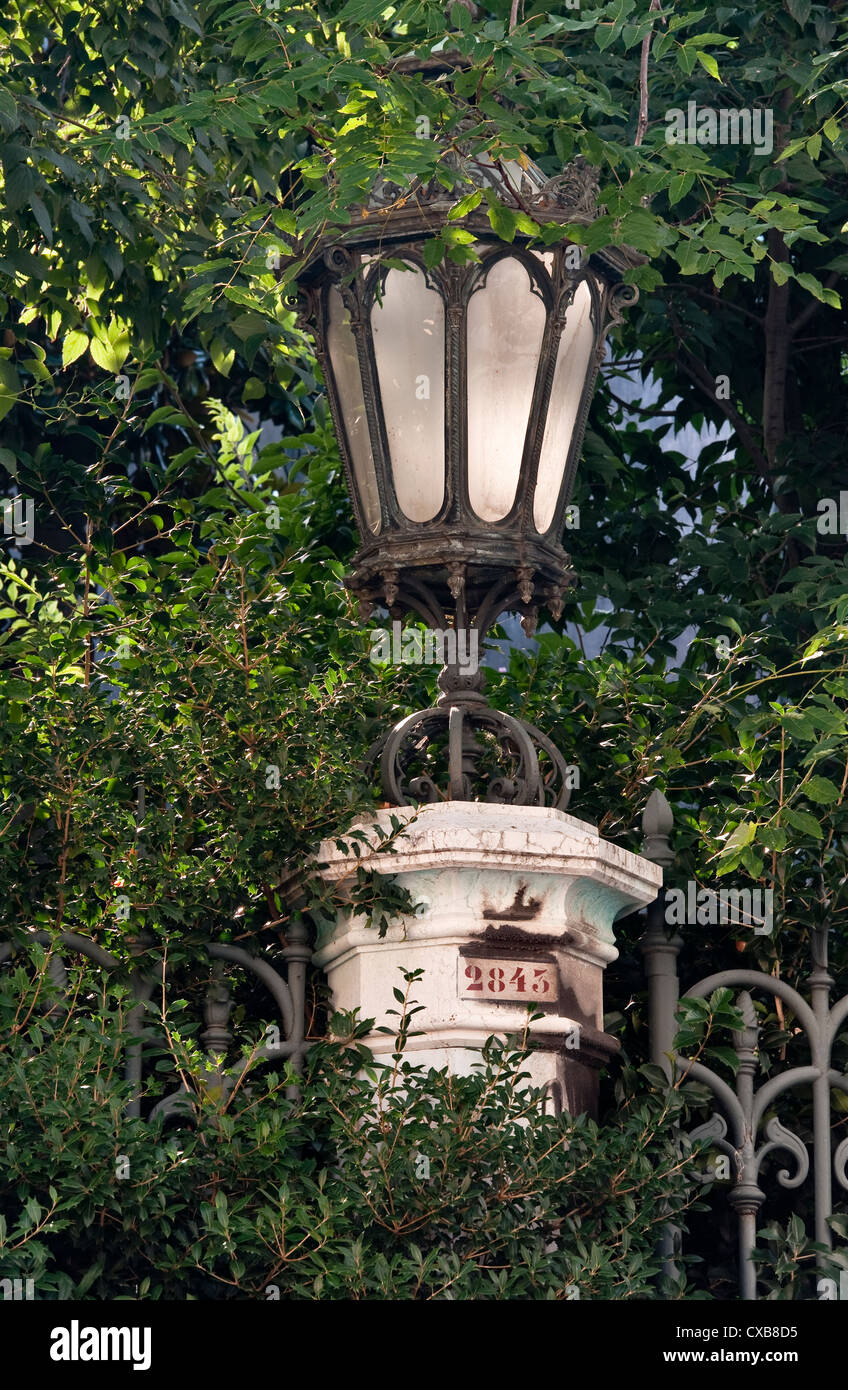 Venice, Italy. A streetlight buried in foliage - Stock Image