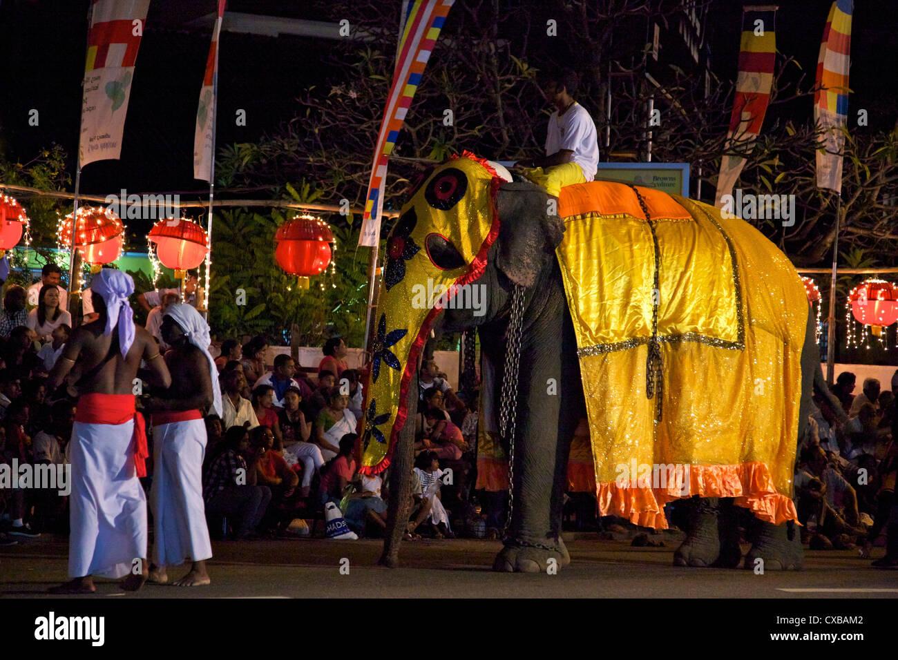 Ceremonial elephant in the Navam Maha Perahera, Colombo, Sri Lanka, Asia - Stock Image