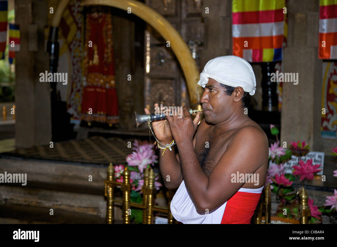 Man playing Horanewa, Tooth Sanctuary, Temple of the Tooth Relic, Kandy, Sri Lanka, Asia - Stock Image