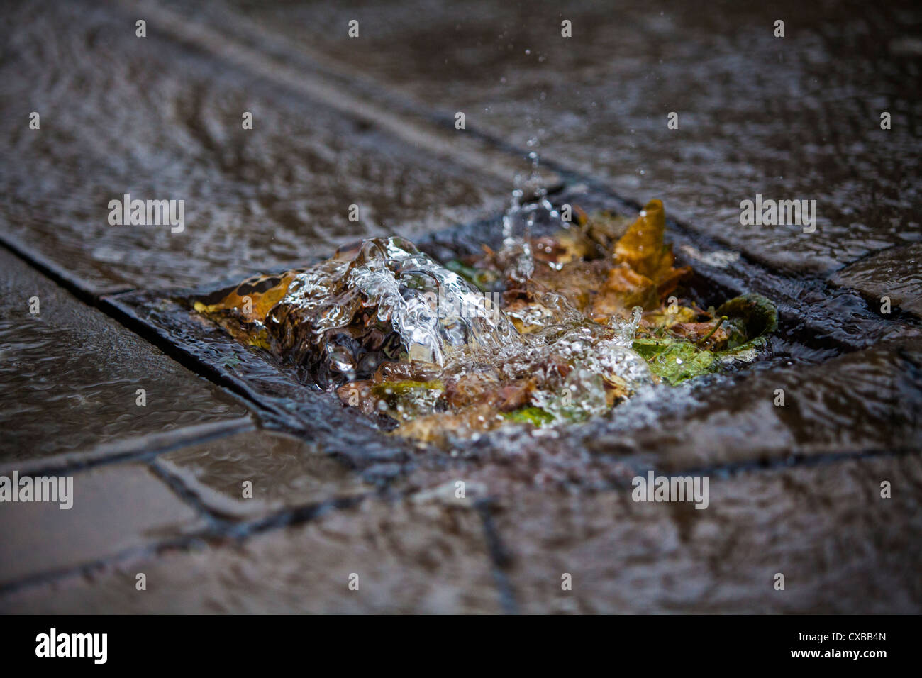 Rain water flowing in to a grate blocked with leaves in Birmingham, UK. - Stock Image