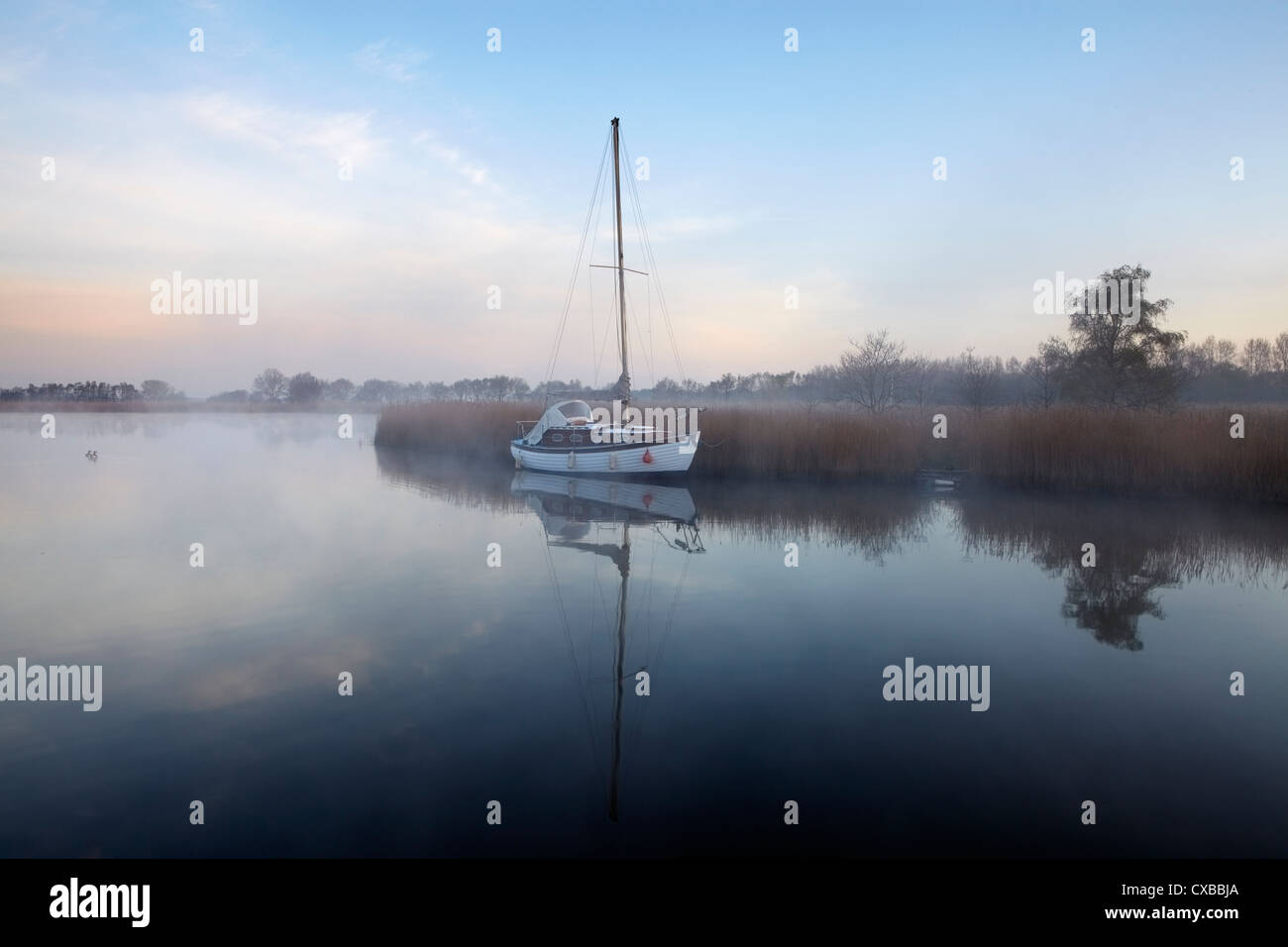 A misty morning in the Norfolk Broads at Horsey Mere, Norfolk, England, United Kingdom, Europe Stock Photo