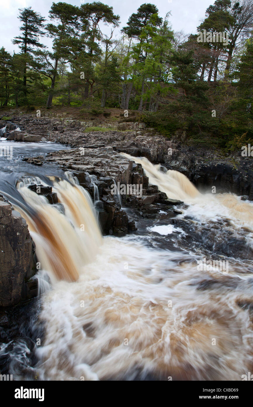 Low Force Waterfall in Upper Teesdale, County Durham, England, United Kingdom, Europe - Stock Image
