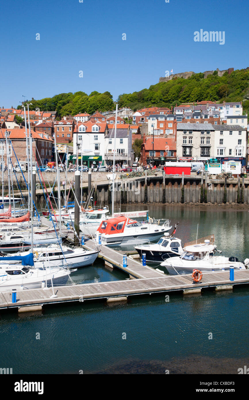 Yachts in the Harbour, Scarborough, North Yorkshire, Yorkshire, England, United Kingdom, Europe - Stock Image