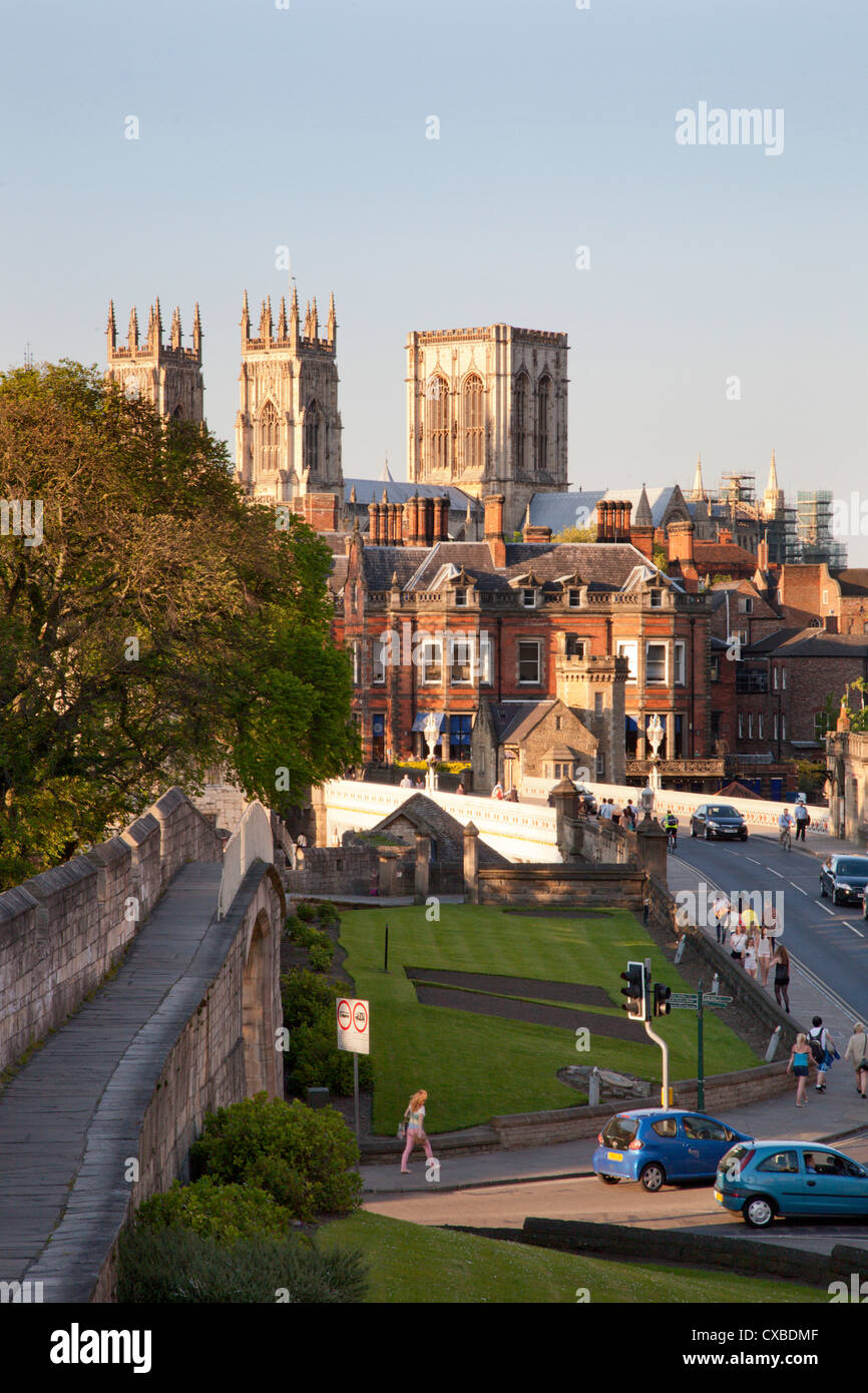 York Minster from the City Walls, York, North Yorkshire, Yorkshire, England, United Kingdom, Europe - Stock Image