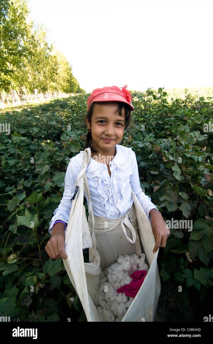 Uzbek women working in the cotton fields in central Uzbekistan. - Stock Image
