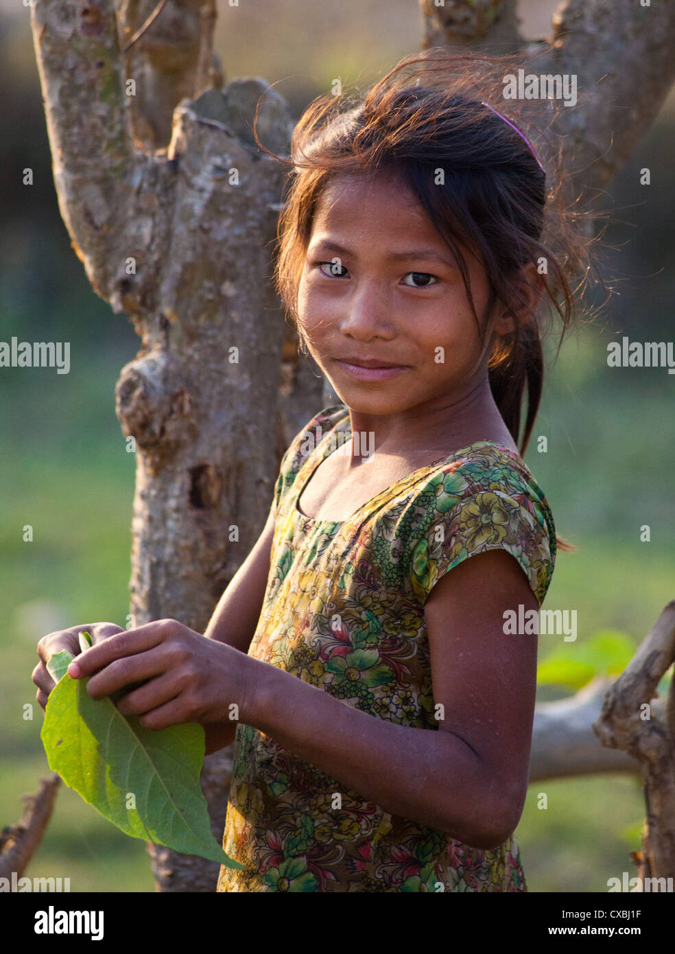 Young Nepali girl, Bardia, Nepal - Stock Image