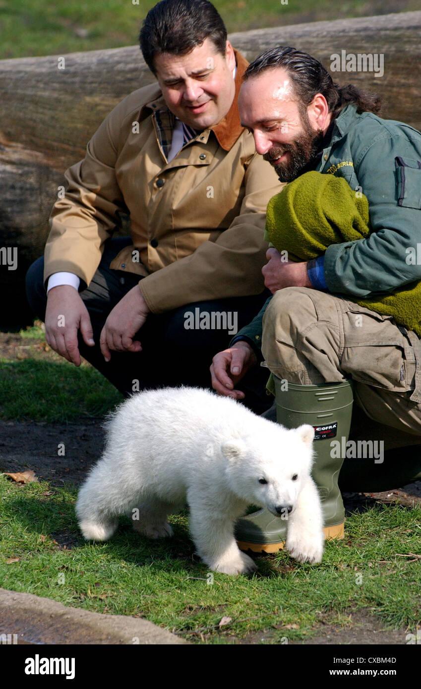 Berlin polar bear Knut with carers Dörflein and Federal Environment Minister Sigmar Gabriel (SPD) Stock Photo