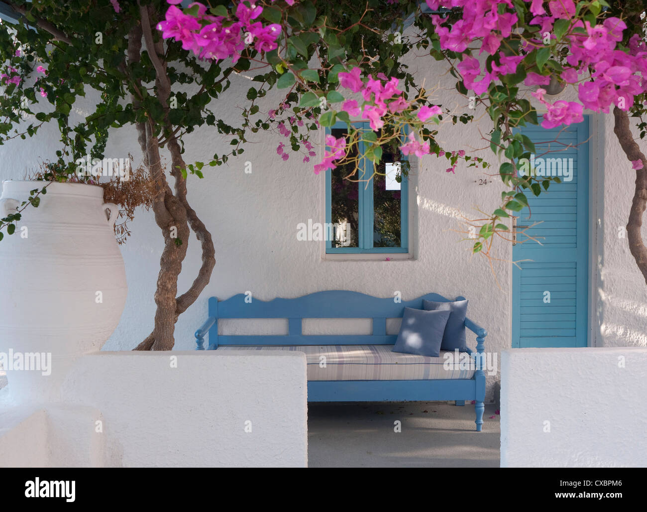 bougainvillea flowers outside hotel room, kamari, santorini, greece - Stock Image
