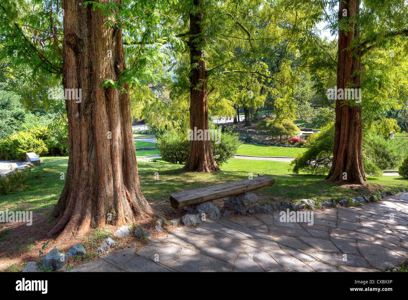 Narrow footpath among trees in Valentino Park (aka Parco del Valentino) in Turin, Italy. - Stock Image