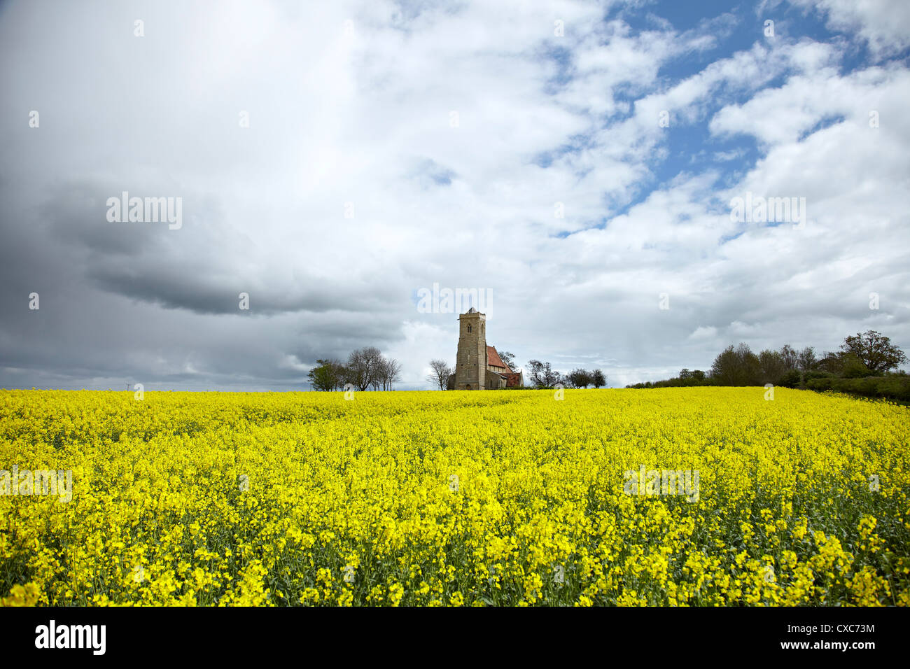 St. Andrew's Church, Wood Walton, Cambridgeshire, England, United Kingdom, Europe - Stock Image