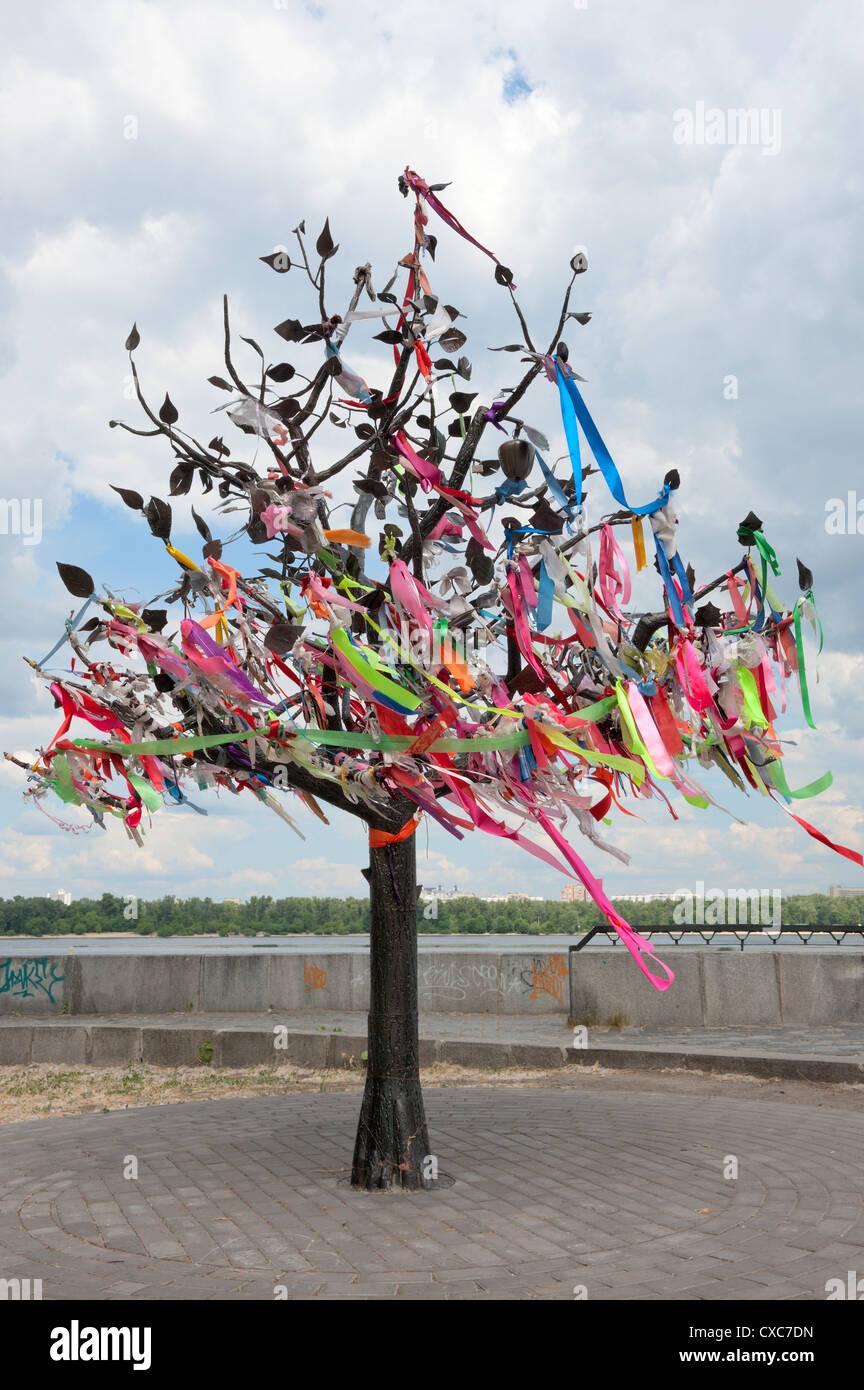 Wish Tree, Kiev, Ukraine, Europe - Stock Image