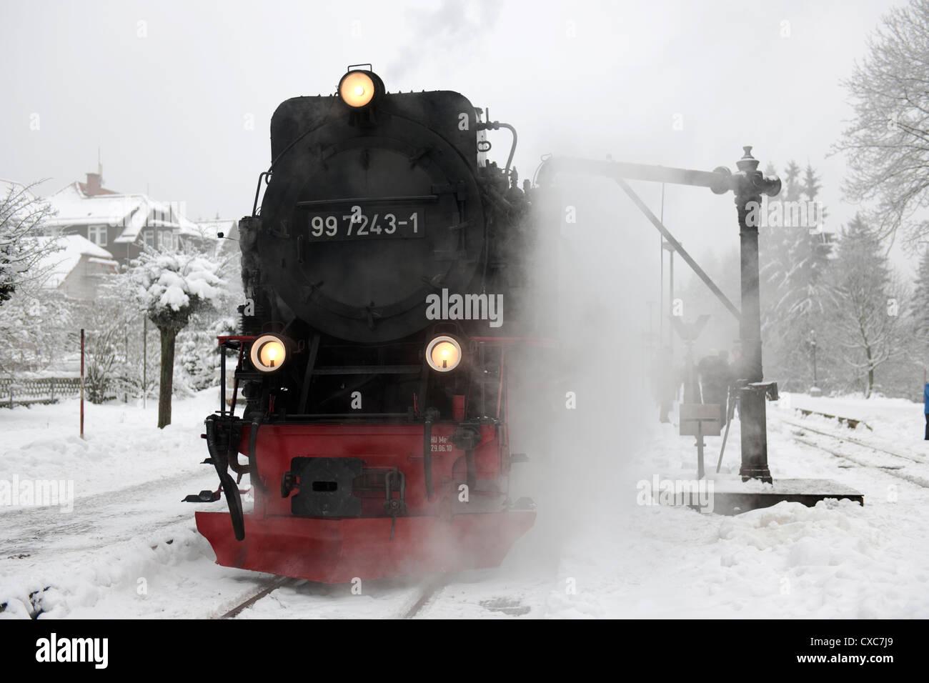 Narrow Gauge Steam Locomotives hauled Train at Schierke -4 - Stock Image