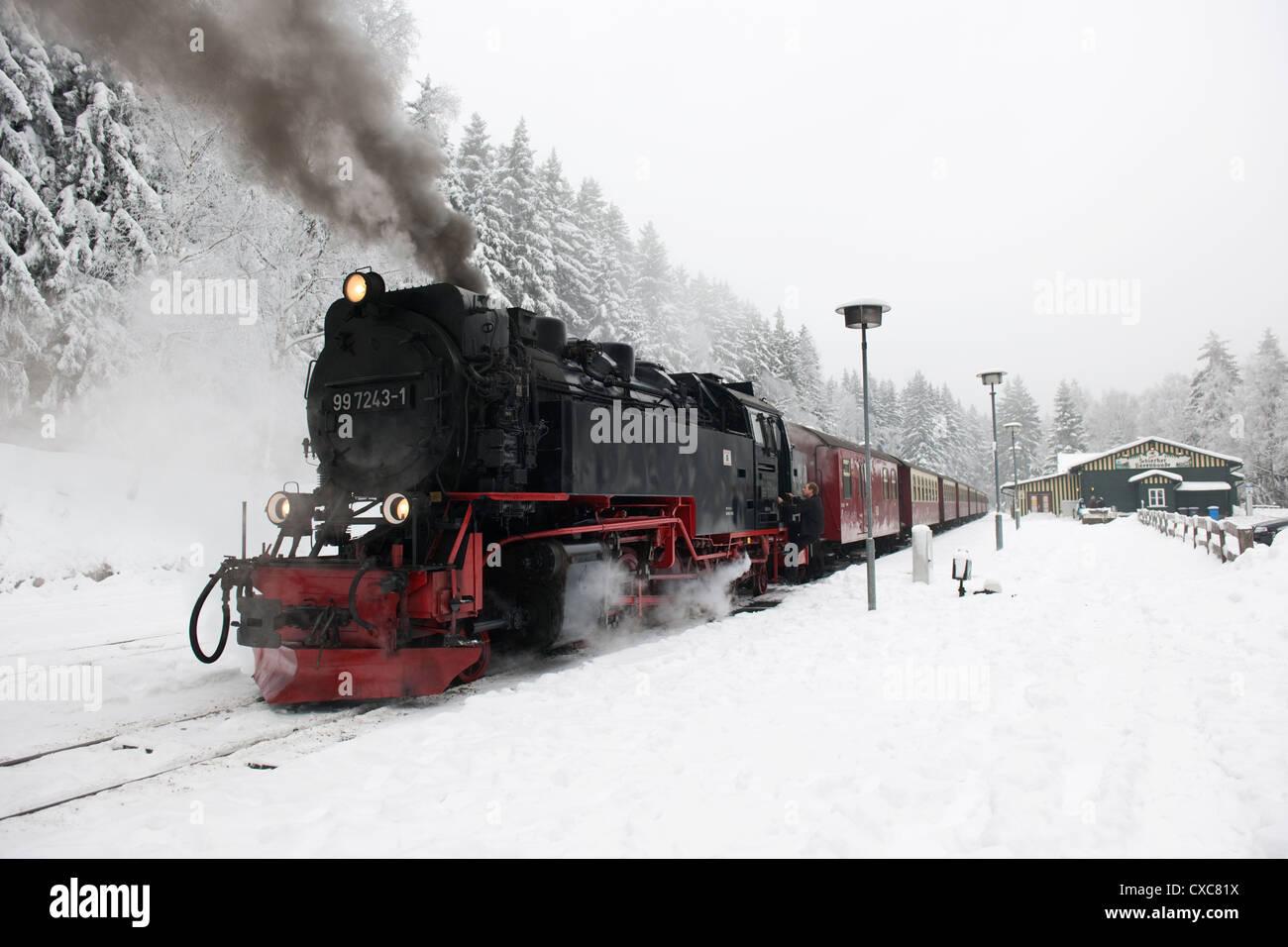 Narrow Gauge Steam Locomotives hauled Train at Schierke -2 - Stock Image