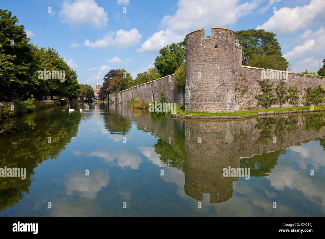 Moat and Bishops Palace, a medieval building, home to the Bishops of Bath and Wells for 800 years, Wells, Somerset, - Stock Image